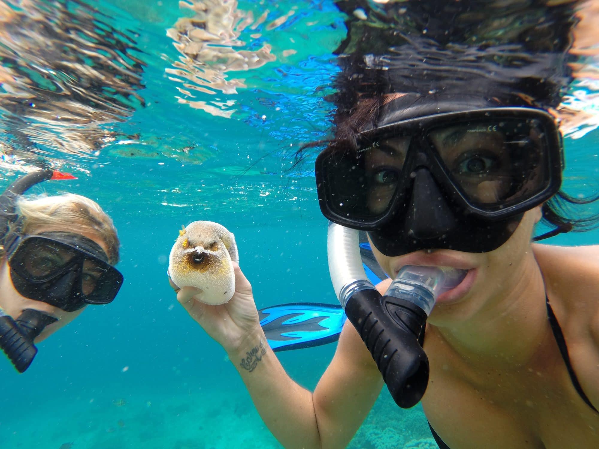 Quoi faire à Bali-snorkeling Amed