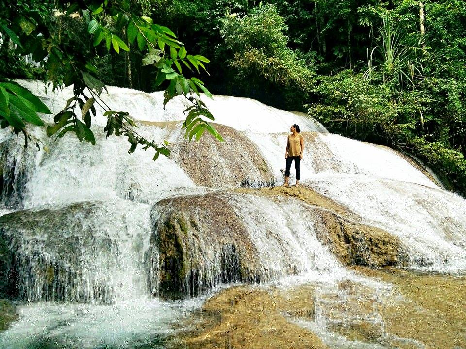 Quoi faire en Sulawesi Tentena