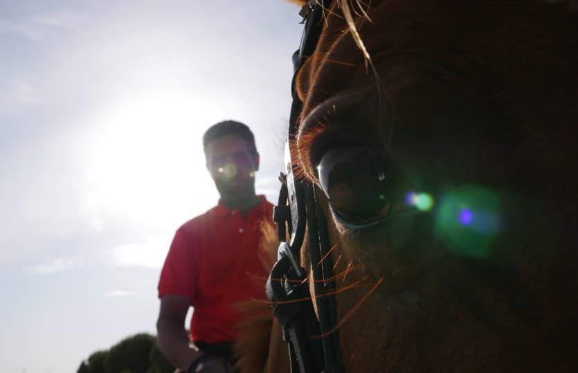 Monter à cheval en Camargue